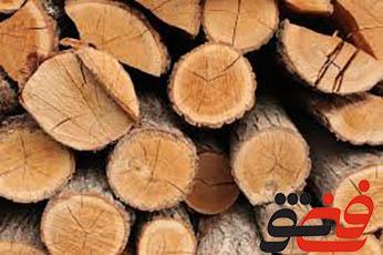 سازه-های-چوبی-ونگهداری-آن