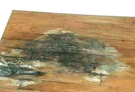 فرز زدن سطح مقطع چوب,کار با ماشین پوست,اصول کار با چوب,