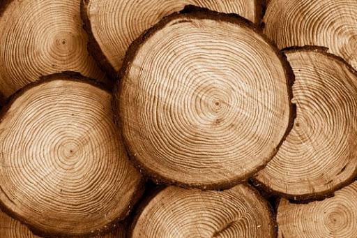 کار با چوب